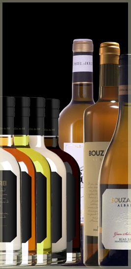Bouza do Rei winery products
